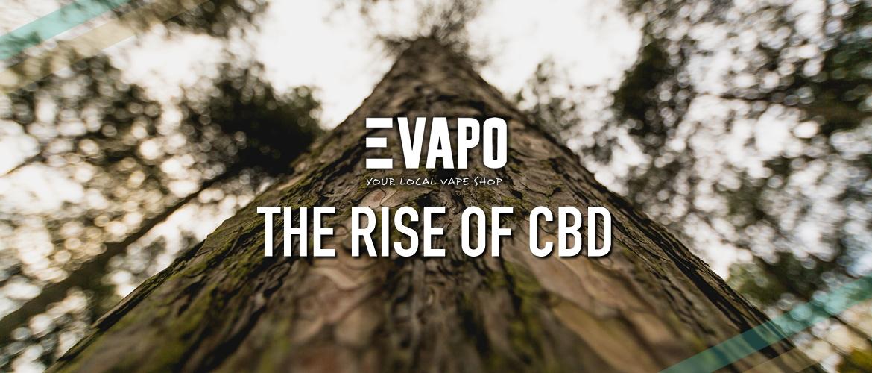 The Rise of CBD